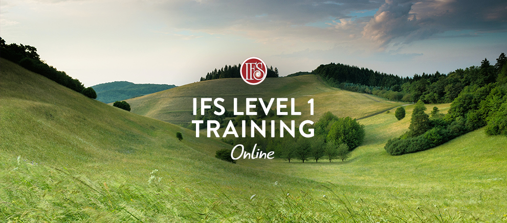 IFS Level 1 Online Training