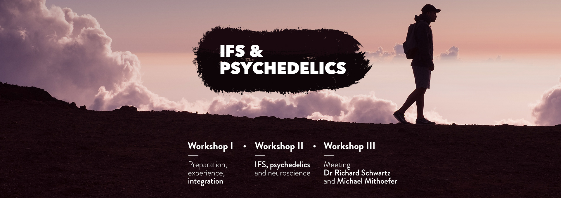 IFS & Psychedelics LP 29